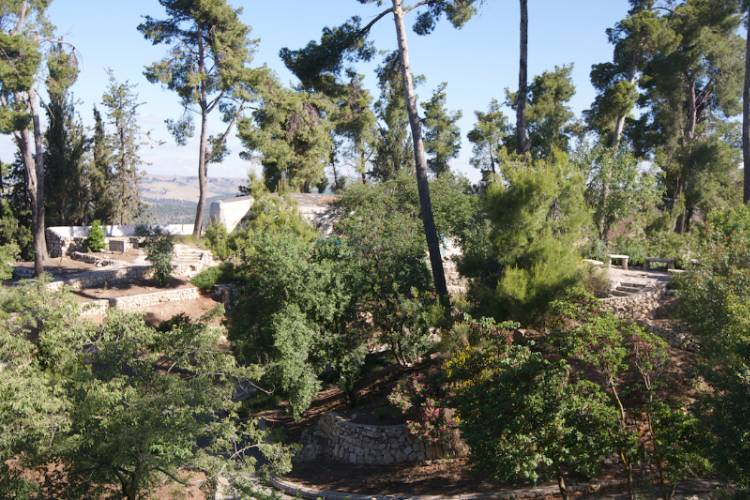Come Take A Morning Stroll To Tzfat\'s Citadel Park. 22 of 31