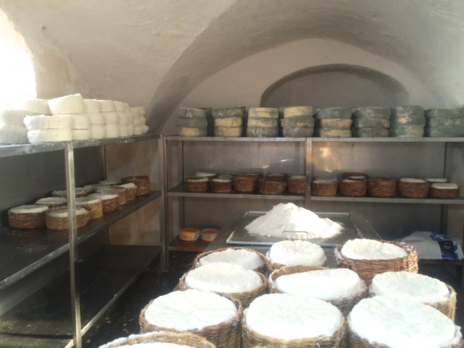 Visit The Tzfat Cheese Factory Cellar. 26 of 31