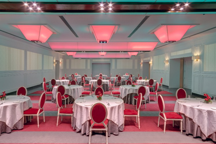 Rangmahal-The Ball Room A Perfect Space For Your Conferences Or Your Family Function 10 of 11