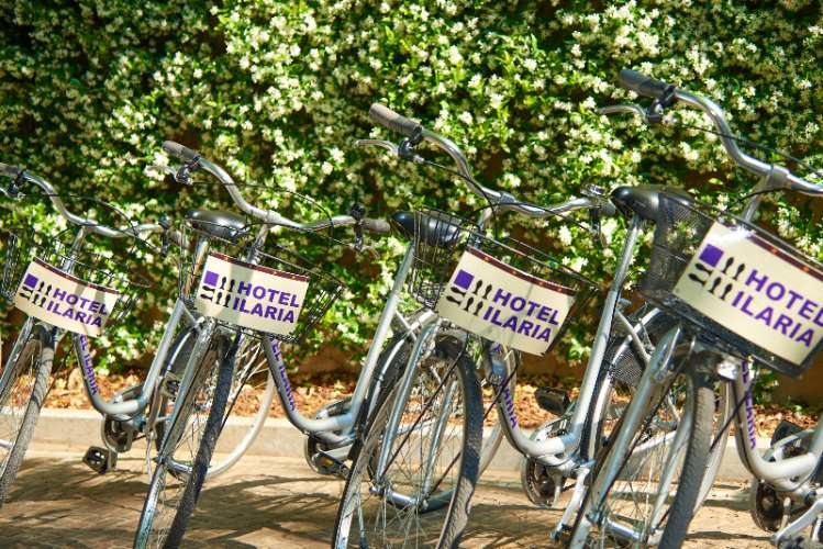 Bicycles 5 of 15