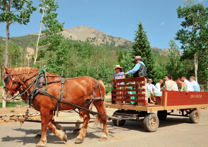 Wagon Rides & Cowboy Suppers 8 of 24