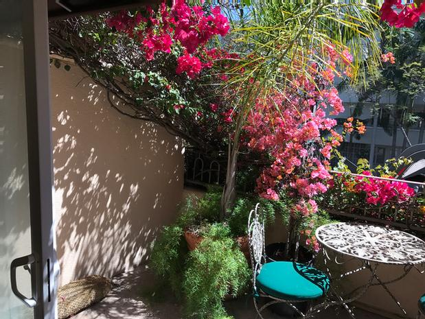 Our Terrace Rooms Offer Private Patios 9 of 24