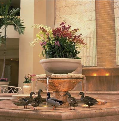 Lobby Duck Fountain 4 of 11