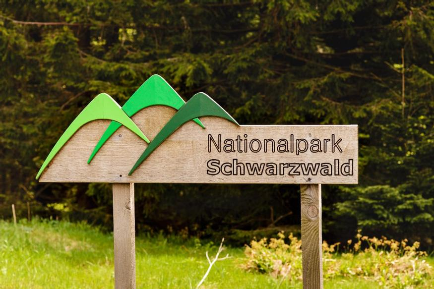 Nationalpark Schwarzwald 29 of 31