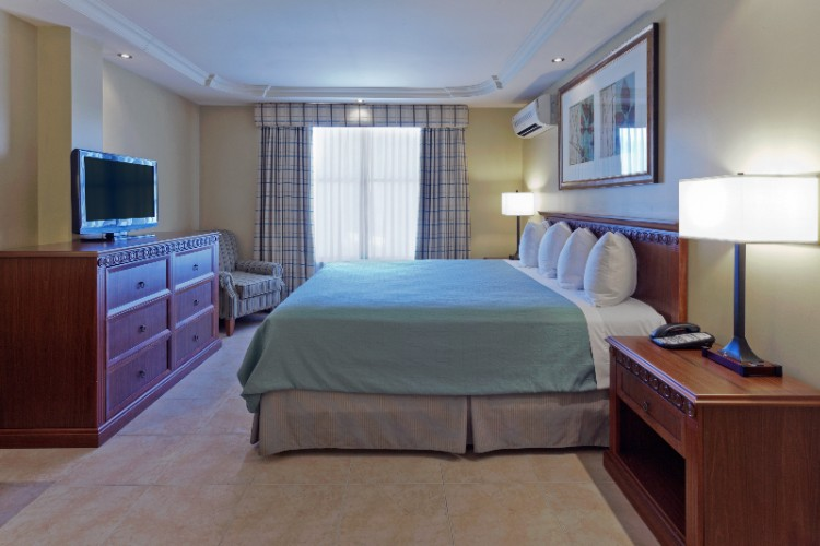 Suite Room With King Bed 9 of 20
