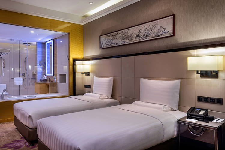 Deluxe Room With Two Single Beds 9 of 28