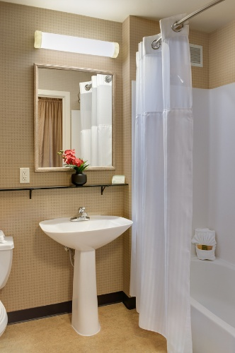 In-Room Bathroom 11 of 31