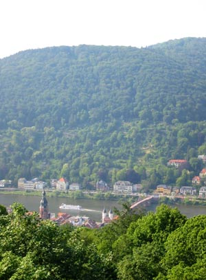View Over Heidelberg From Our Terrace 4 of 9