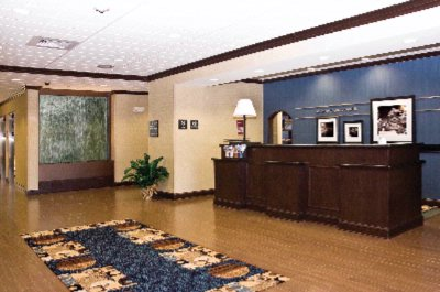 Our Modern Decor Is Evident With Our Wood Floors Transitioned With Carpet. 4 of 21