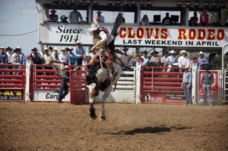 Clovis Rodeo 2.3 Miles 12 of 21