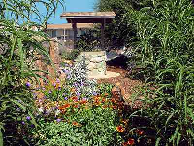 Xeriscape Garden 8 of 10