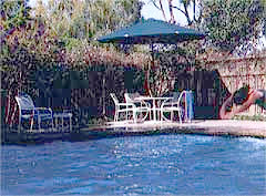 Year-Round Heated Outdoor Pool 5 of 8
