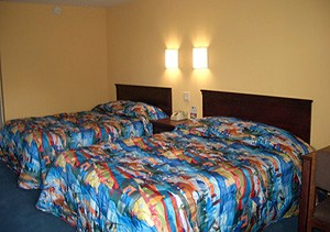 Motel 6 Newly Renovated Guest Room 3 of 3