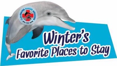Winter The Dolphin Loves Us! 14 of 18