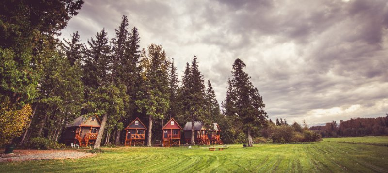 Hidden Acres Farm & Treehouse Resort 1 of 14