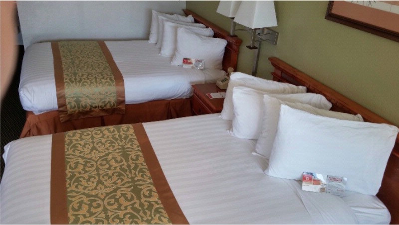 Standard Double Bedded Room With Full Size Beds 19 of 24