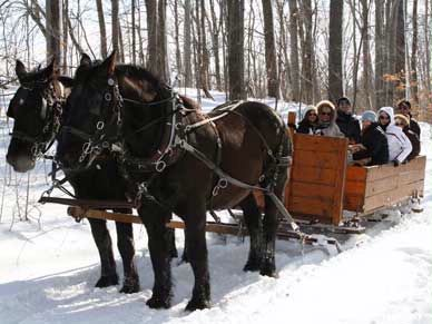 Wolcott Farms Horsebackriding And Sleigh Rides 11 of 14
