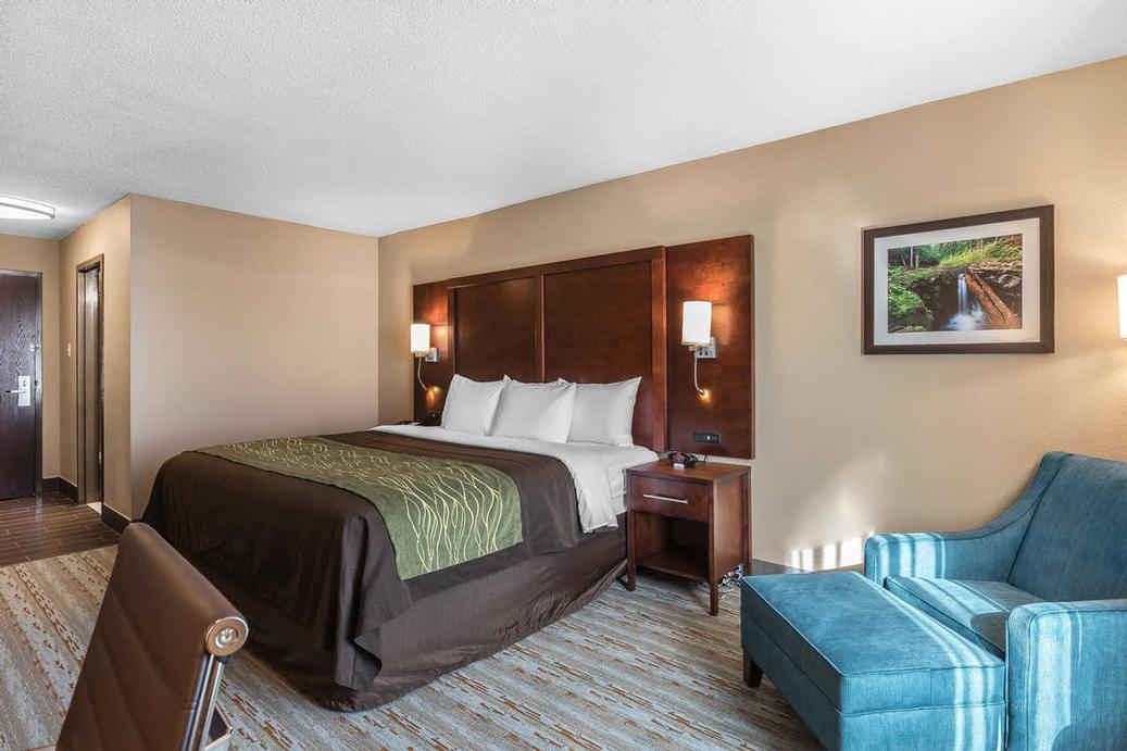 Enjoy A Great Nights Sleep In Our Well Appointed Guestrooms 7 of 15
