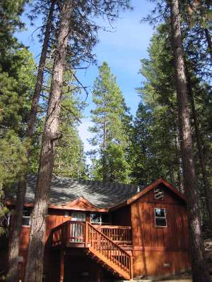 Image of Evergreen Lodge