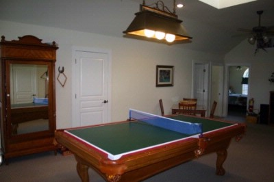 Ping Pong Or Billards 9 of 18