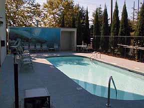 Out Swimming Pool 3 of 6