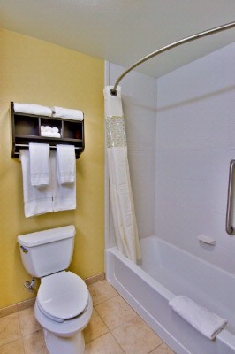 Our Shower/tub Combo In Double Standard And Our Studio\'s Suites 15 of 25