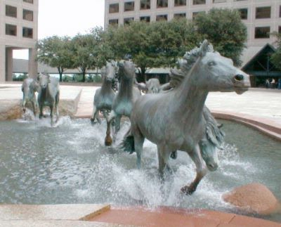 Mustangs At Las Colinas 15 of 17