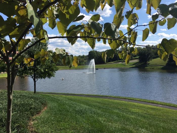 Hilton Garden Inn Charlottesville Va - [tsheendesign.com]