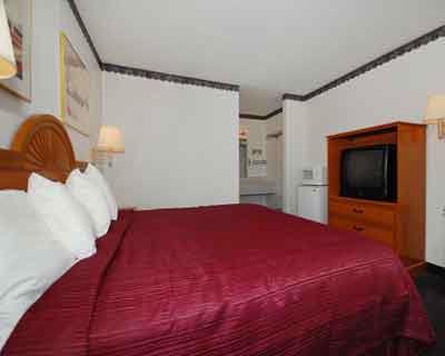 Standard King/single Guest Room With All Ammenities. Fridges & Microwaves Available. 8 of 17