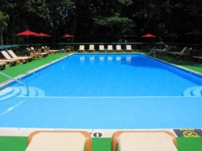 Outdoor Olympic Size Pool 8 of 17