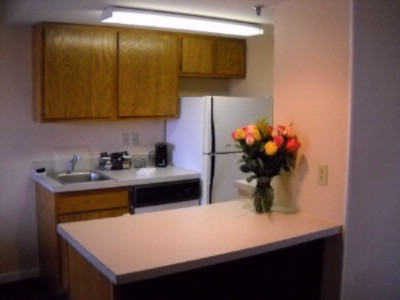 A Fully Equipped Kitchenette. Comes With An Oven Microwave Refrigerator Stove Dishwasher. Perfect To Make Meals 10 of 11