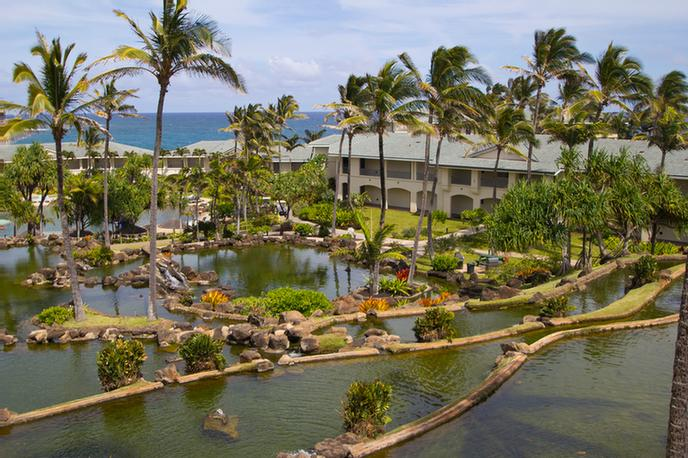 The Point at Poipu by Diamond Resorts International 1 of 11