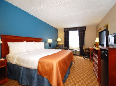 Newly Renovated Spacious And Accommodating Rooms 10 of 14