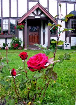 Tudor Rose Manor-an Elegant Corp Or Family Reunion Home 2 of 13