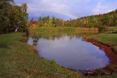 Rainbow Over Our Pond 3 of 5