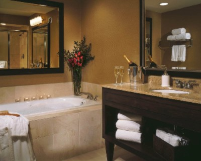 Deluxe Suite Bathroom 9 of 11
