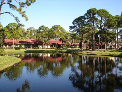 Two Beautiful Scenic Ponds Home Of Great Blue & White Herons & Other Species Of Tropical Birds 10 of 11