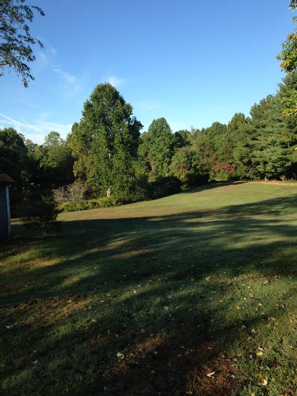 Lawn Available For Walks Or Meetings Or Picnics 6 of 13