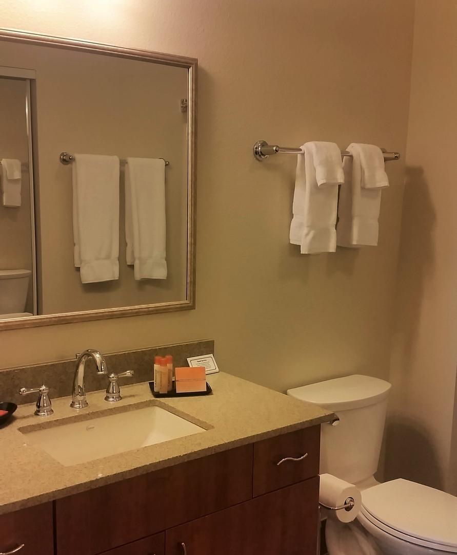 Oversized Bathrooms In Every Suite 10 of 10