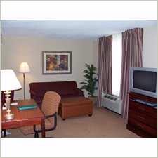 King Studio Suite Living Room Area 6 of 7