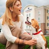 Candlewood Suites Is Pet Friendly 11 of 12