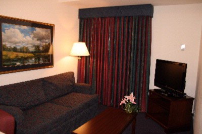 King Standard Suite Living Area W/pull Out Sofa Bed 8 of 17