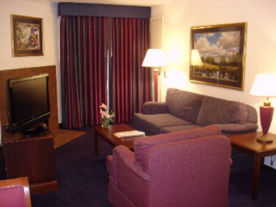 King Deluxe Suite Living Area W/pull Out Sofa Bed 10 of 17