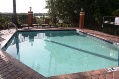 Brand New Pool & Patio Area 5 of 11