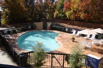 Beautiful Outdoor Pool 9 of 16