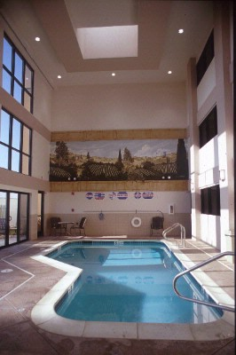 Indoor Pool & Whirlpool 3 of 8