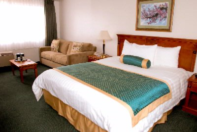 Mini Suite Room W/. King-Size Bed 11 of 14