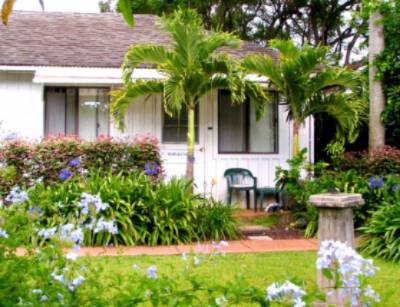 The Hibiscus Cottage 3 of 31