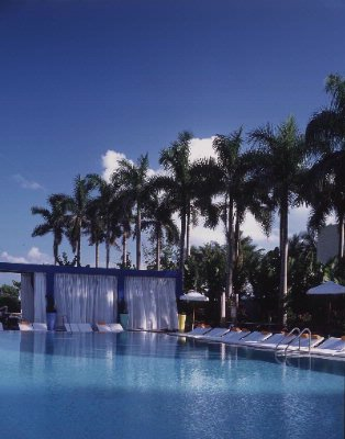 Shore Club Pool 3 of 9