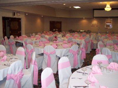 Ball Room In Pink 6 of 14